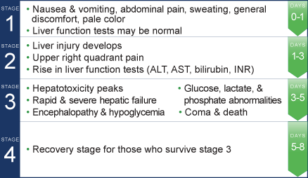 Four stages of acetaminophen overdose